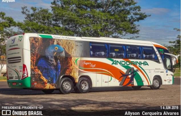 MS: Transporte intermunicipal de passageiros pode operar com 50% da capacidade, diz Agepan