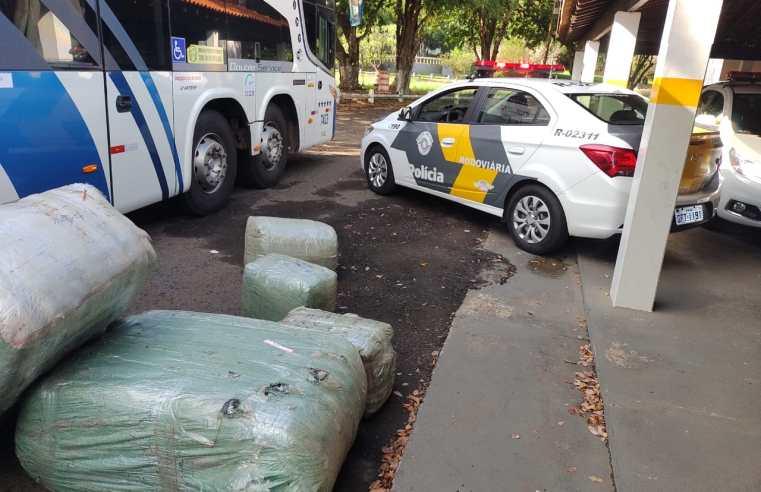 SP: Polícia Rodoviária apreende contrabando em ônibus durante fiscalização na Rodovia Raposo Tavares em Assis