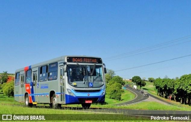 PR: Vereadores de Apucarana aprovam redução na tarifa do transporte coletivo