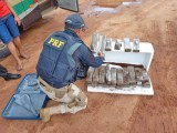 PRF apreende 26kg de entorpecente em bagageiro de ônibus na BR-135 em São Luís