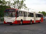 Manaus: Passageira de ônibus teve orelha cortada durante assalto na zona norte