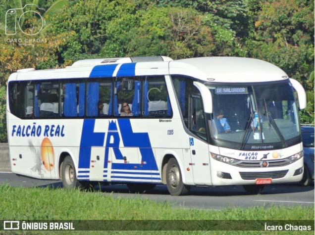 Salvador: Ex-funcionários da Falcão Real fazem protesto na região da rodoviária
