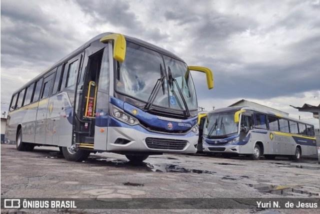 SP: Executiva Transportes e Turismo renova com cinco Viaggio 800 Mercedes-Benz - revistadoonibus