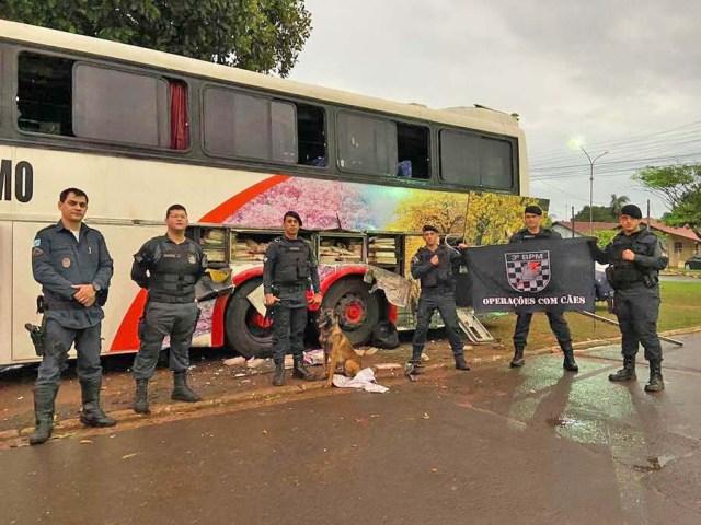 Vídeo: PM apreende farto material entorpecente em ônibus na cidade de Juti/MS - revistadoonibus