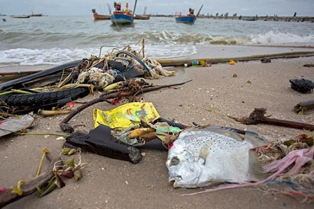 Foto: Chanklang Kanthong - Greenpeace
