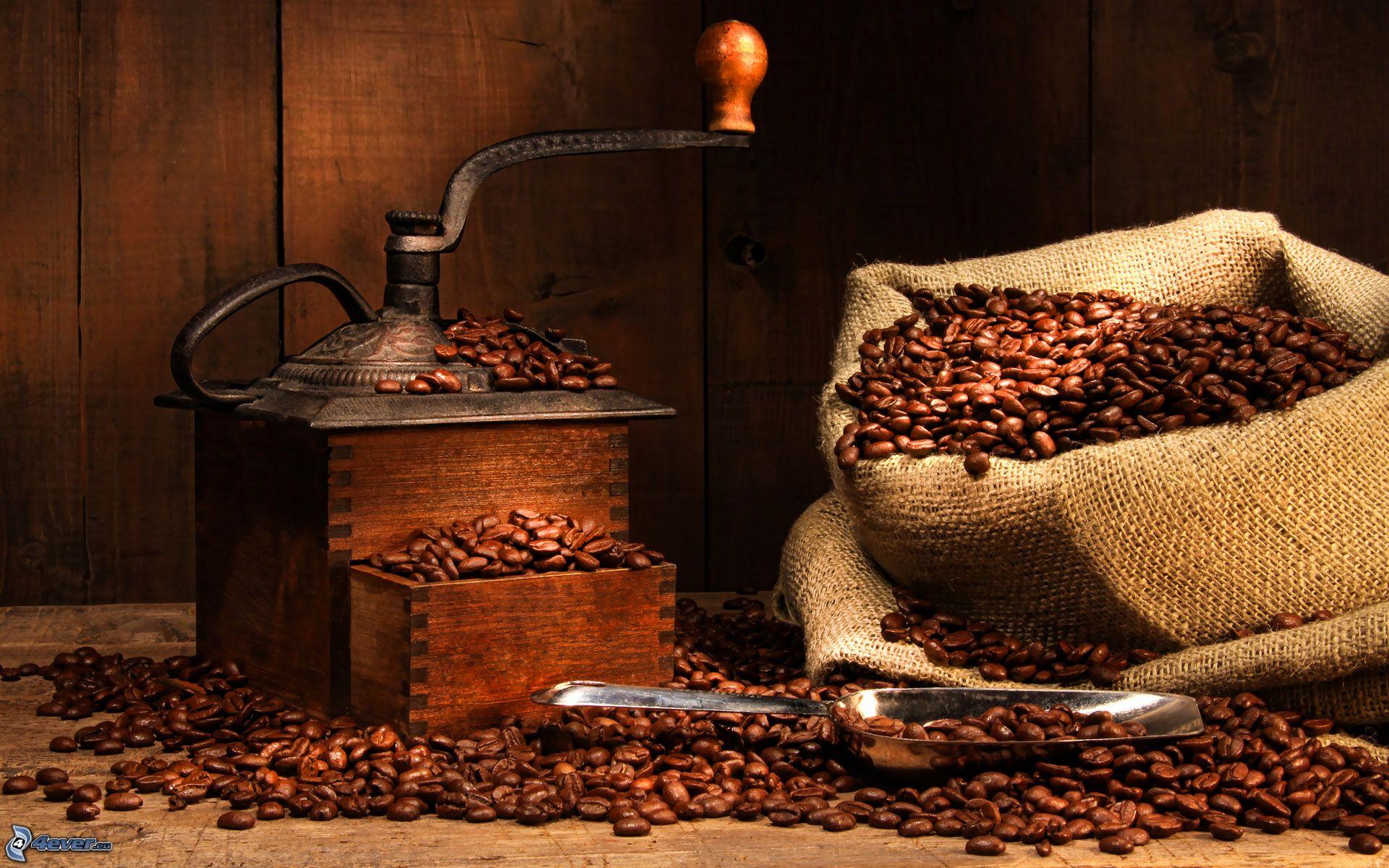 Las 11 del caf Revista El Conocedor