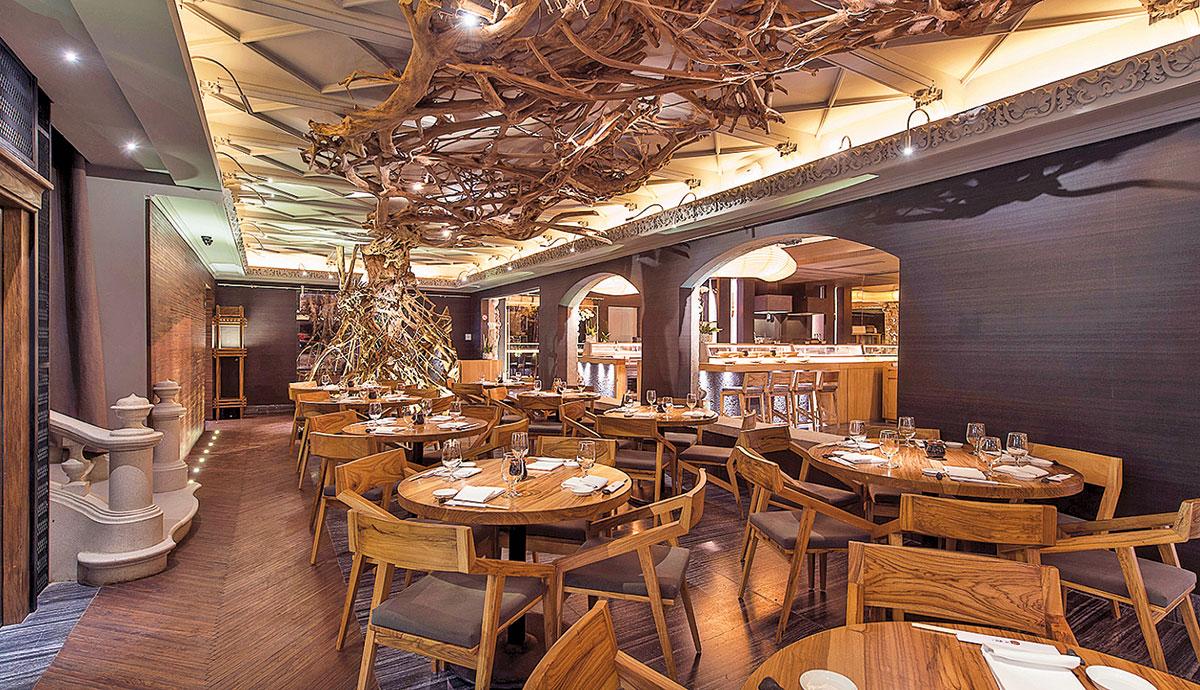 Restaurantes para festejar a mam  Revista El Conocedor