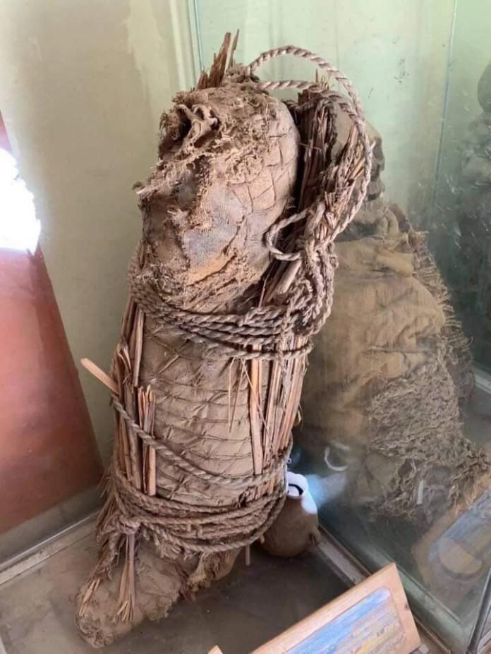 Crânios alongados absolutamente anômalos foram descobertos no Peru