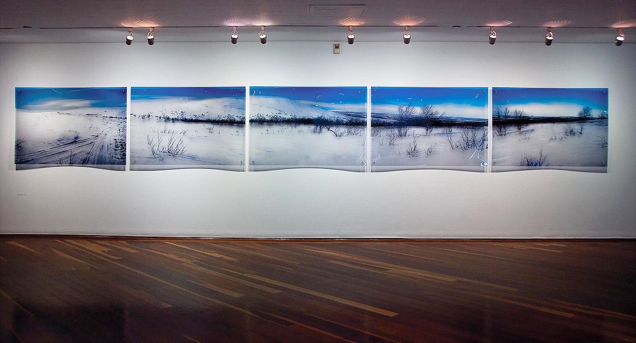 Antonio Briceño. Serie 520 renos. Centro Cultural BOD. 2011.