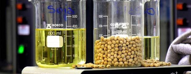 Los subproductos argentinos de soja podrían verse beneficiados por el conflicto China/EEUU