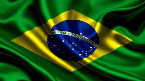 Brasil libera el 87% de las importaciones en menos de 7 días, según Estudio.