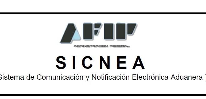 SICNEA: Incorporación de los TRAS al circuito de Embalajes de Madera.