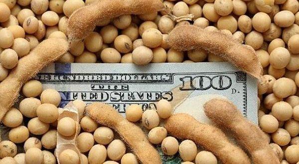 El Banco Central extendió la obligatoriedad de liquidar divisas por exportaciones