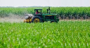 SISA: Los productos deben cargar sus datos este mes para la cosecha gruesa.