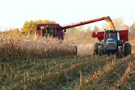 Exportaciones de granos y derivados aumentan u$s6.400 millones en 2019.