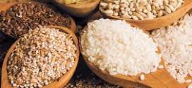 Mercado de granos estable.