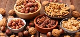 Rio Negro aumentó en un 38% la exportación de frutos secos, en relación con el año pasado.