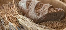 Récord de despachos de exportación de trigo.