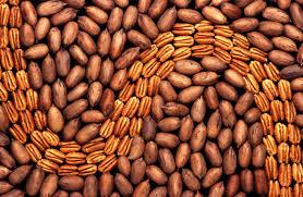 Argentina realizó la primera exportación de nuez pecán con cáscara a Brasil
