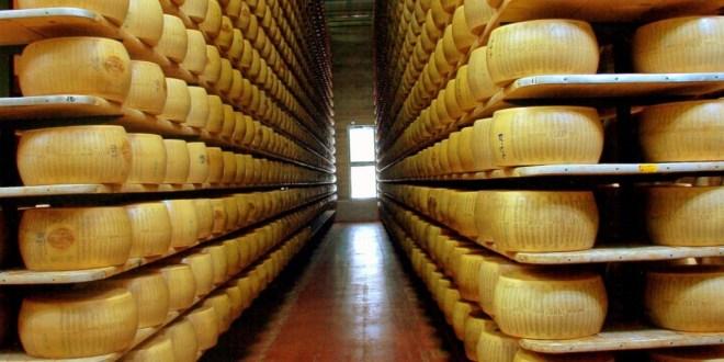 Cooperativas se unen para exportar quesos