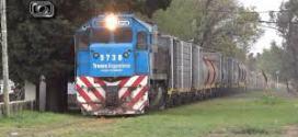 Trenes Argentinos transportó 15% más de carga en 2020: qué productos llevó.