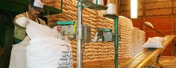 La exportación de yerba pegó un salto de 44%