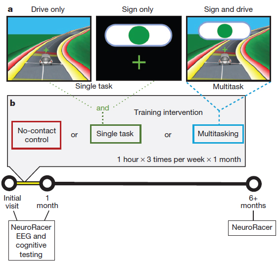 Condições experimentais de NeuroRacer e desenho do estudo. (Anguera, J. Video game training enhances cognitive control in older adults. Nature 501, 97–101 (2013).)