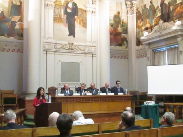 Carlota Dias discursando sobre os desafios da organização do iMED