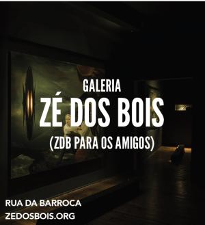 Capa ZDB editada