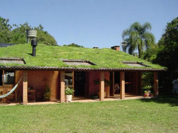 Telhado verde permite a criação de horta orgânica no próprio telhado com hortaliças, suculentas, grama amendoim, rabo de gato, entre outras