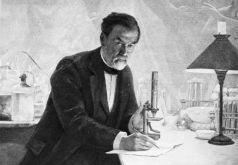 O cientista Louis Pasteur. Crédito: https://www.greelane.com/