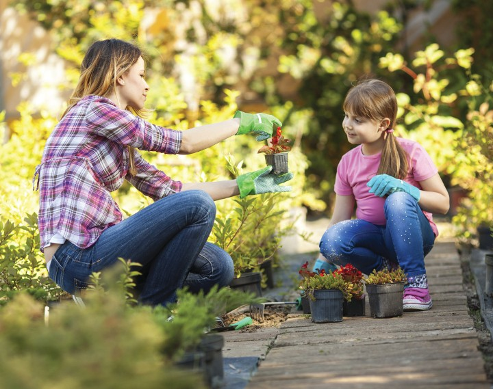 jardinar em família