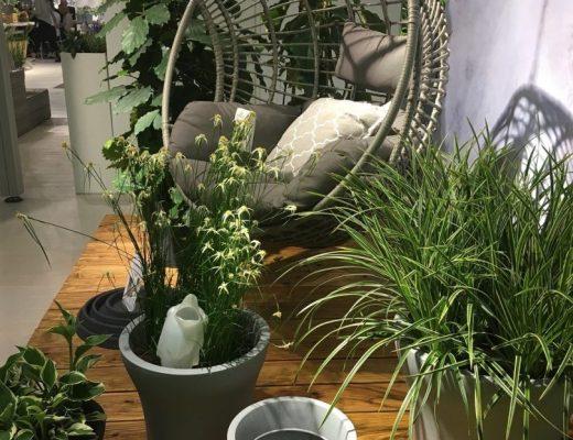 tendências de jardinagem 2019