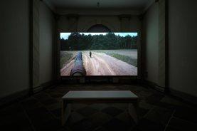 Regina José Galindo, La sombra (The shadow), 2017, video, installation view, Palais Bellevue, Kassel, documenta 14, photo: Daniel Wimmer
