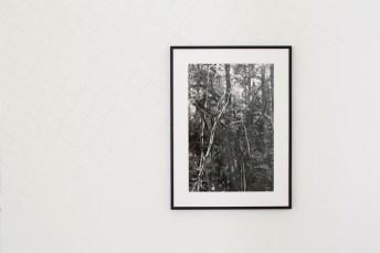 "Vista de la instalación, ""Daniel Steegmann Mangrané: Uma folha translúcida, no lugar da boca"", Fundaçao Serralves, Oporto, 30 Septiembre 2017 – 7 Enero 2018."