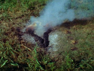 Ana Mendieta, Untitled: Silueta Series, 1978. Film Super 8 © The Estate of Ana Mendieta Collection, LLC. Cortesía Galerie Lelong & Co.
