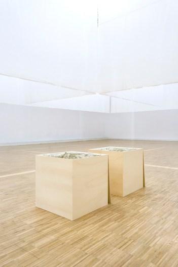 Marlon de Azambuja, Pensamientos (Thoughts). Plastilina en cajas de madera. Cortesía Carlos Rodríguez