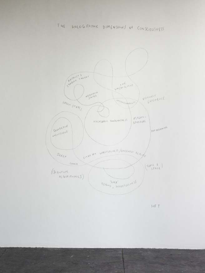 Visuales de la exposicion colectiva des attentions (cur. Brice Domingues, Catherine Guiral, Hélène Meisel), Centre d'art contemporain d'Ivry – le Crédac, 2019. Suzanne Treister, HFT The Gardener/Diagram, The holographic dimensions of consciousness, 2014-2015. Cortesia de l'artiste, Annely Juda Fine Art, Londres et P.P.O.W., New York. Photo : André Morin / le Crédac.