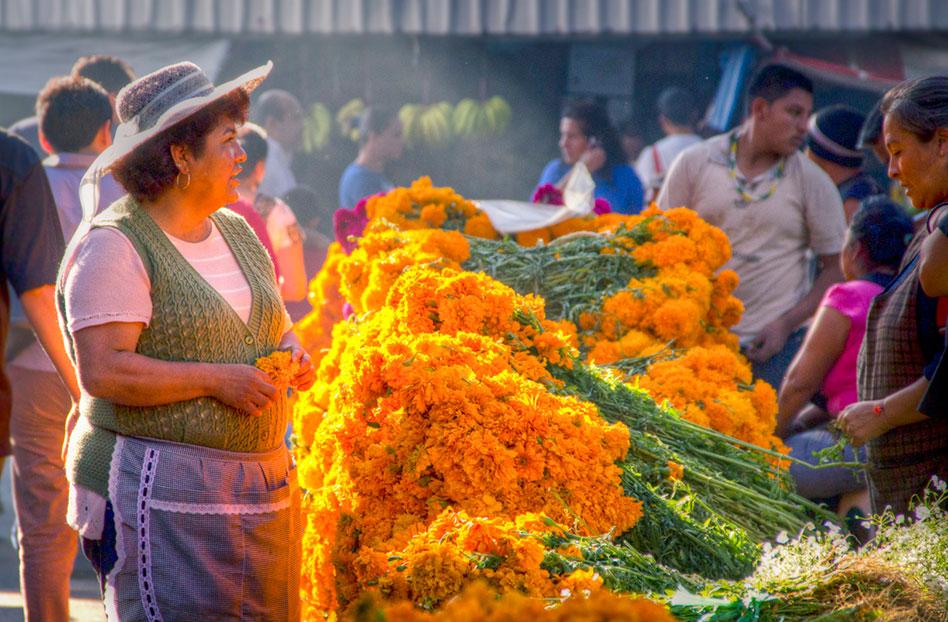 Los mercados: inspiración para Martha Chapa