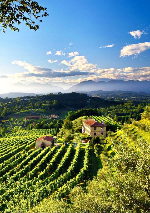Unesco reconoce las colinas del prosecco como patrimonio de la humanidad