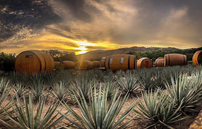 Matices hotel de barricas en la cofradia tequila