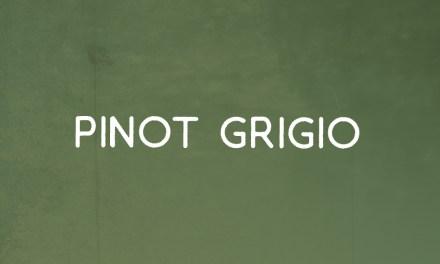 Conoce esta uva: Pinot Grigio