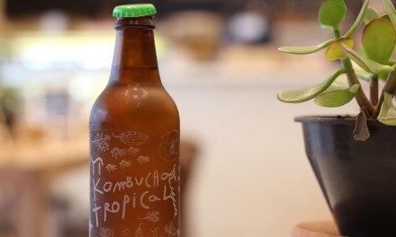 ¿Qué es la kombucha?