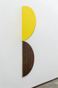 joao-Ferro-martins-Diner-Jaune-2014-200x300