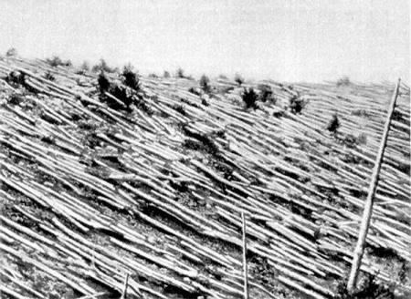 Bosques quemados de Tunguska