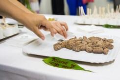educacao-vai-diversificar-a-oferta-de-proteinas-vegetais-nas-escolas-da-rede-municipal-de-ensino-02