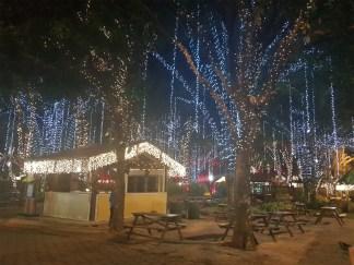 Parque da Expoflora iluminado Vera Longuini