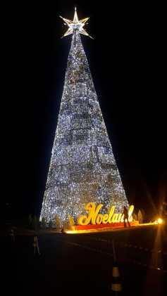 Árvore de Natal com 30 m de altura Débora Valim