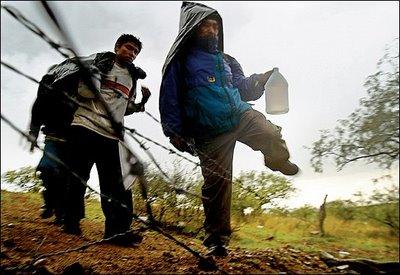 Cruzando la frontera. Foto © aplicaciones.colef.mx