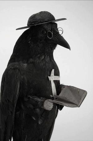 yara cuervo 2